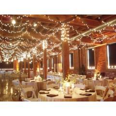 Guirlande LED blanc chaud (100 mètres)